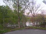フォレストいいで湖畔風景