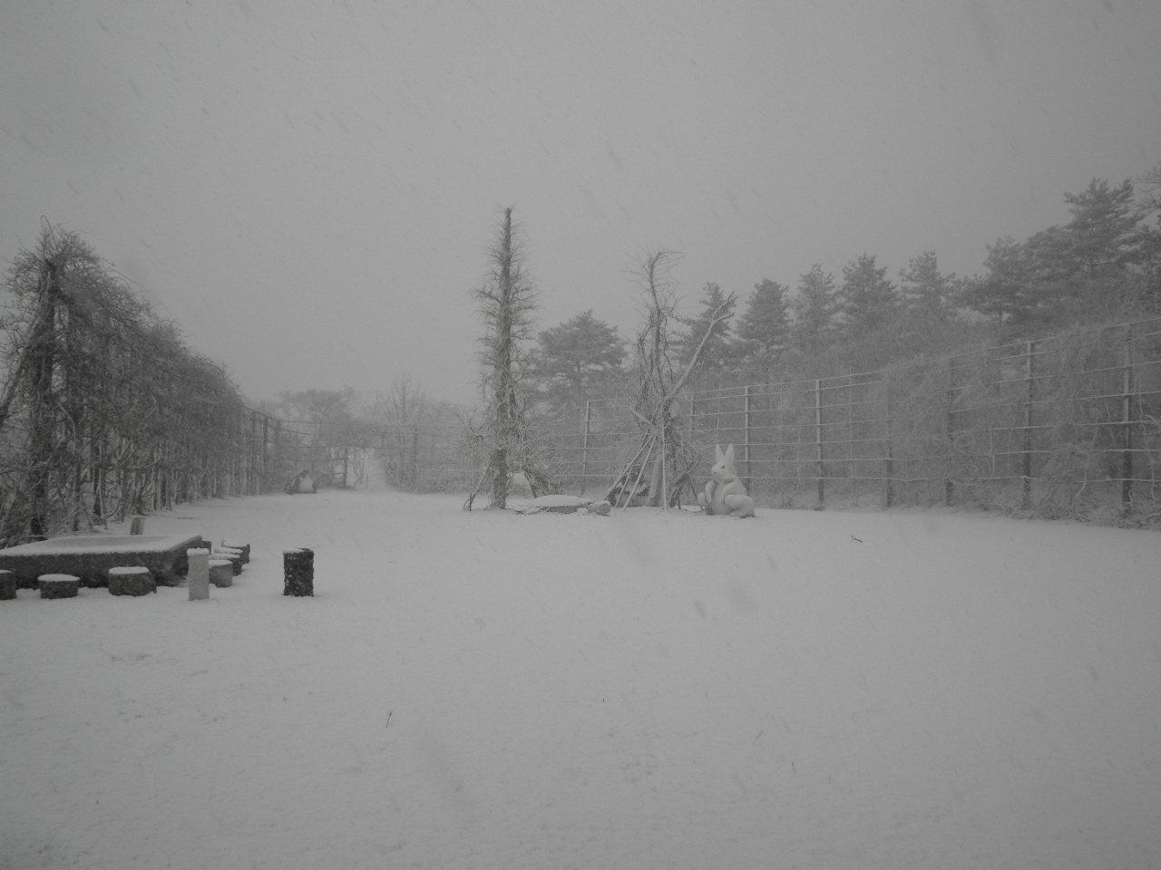 夢の森・催事広場・冬