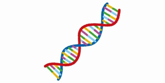 DNA2-min