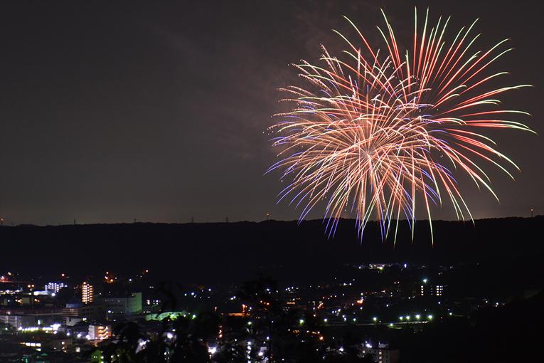天覧山山頂から見る花火 : 四季彩ペダル