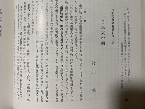 IMG_0217 (1)