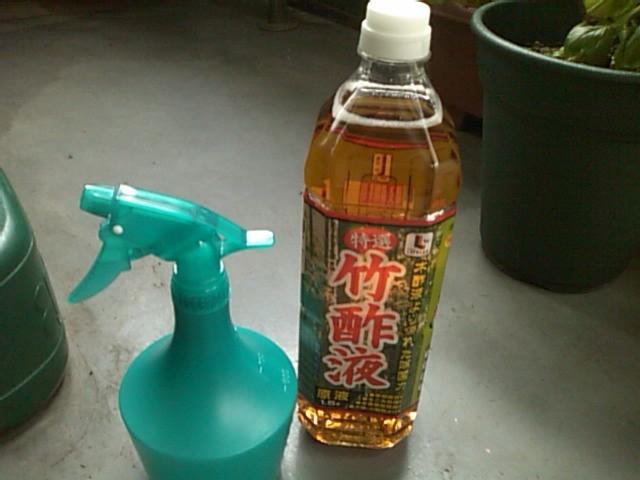 うどんこ病 木酢液
