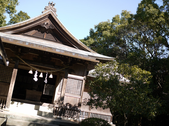 shisatu (20 - 150)