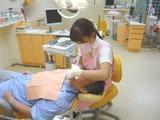 島田歯科 勉強会 歯のクリーニング