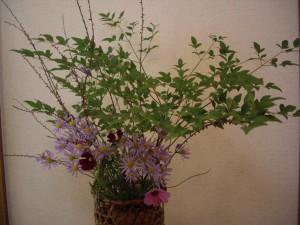 紫苑と小葉南天