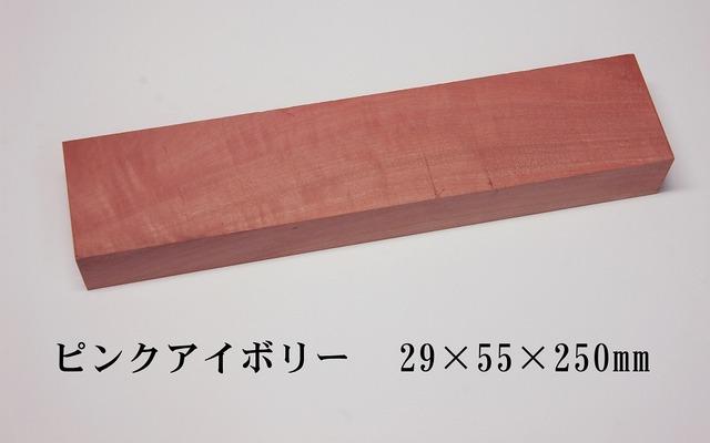 DSC_8553-t