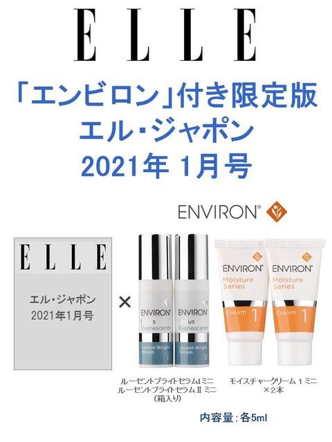 ELLE JAPON (エル・ジャポン) 2021年 1月号 限定版