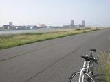 荒川〜葛西臨海公園までサイクリング