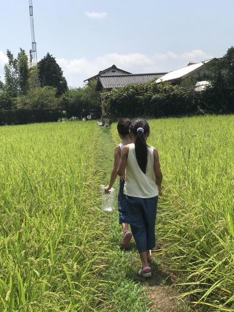 シミキョウ合宿03