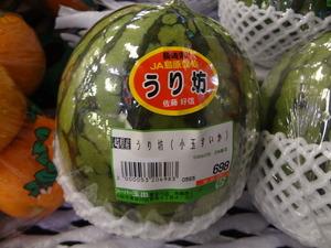 watermelon1304