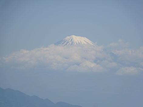 三保の松原から富士180428