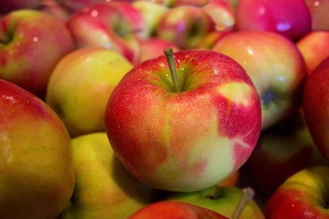 りんご190429