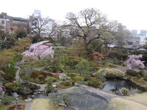 miyakowodori_garden