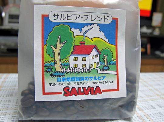 サルビア (1)