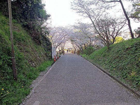 城山 (29)