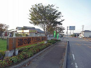 朝ポタ (41)