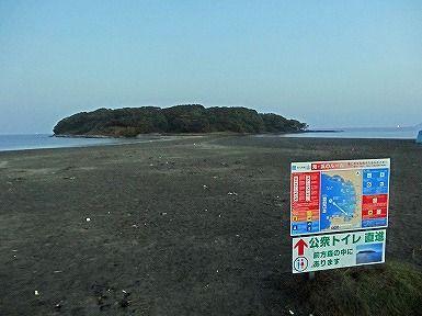 朝ポタ (5)