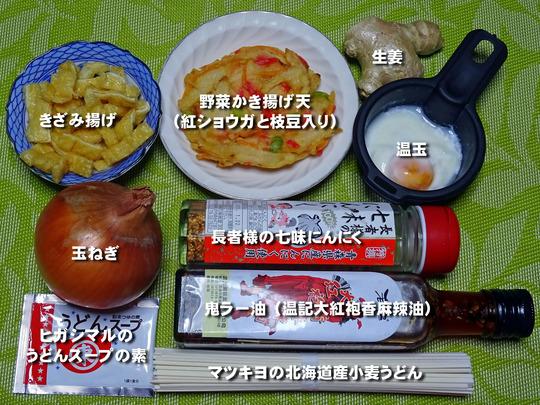 野菜かき揚げ天温玉うどん2