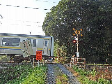 朝ポタ (46)