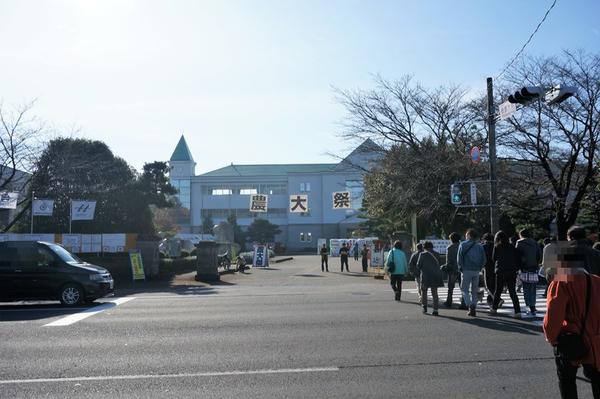 農大祭入口
