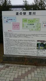 d1b2027a.jpg