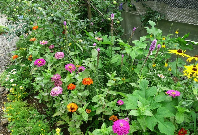 june garden 07