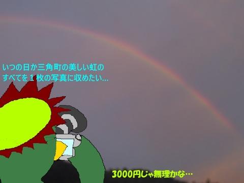 いつか虹の全てを