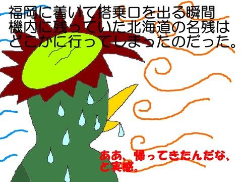 やはり九州は暑い