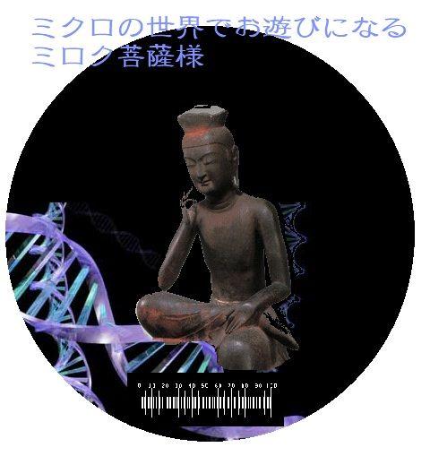 「ミクロ菩薩」の画像検索結果
