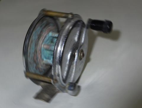 IMGP5263t