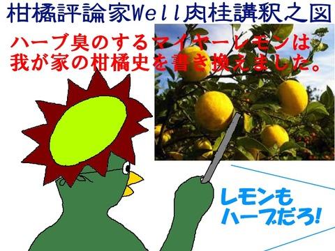 マイヤーレモン革命