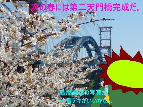 第二天門橋の桜