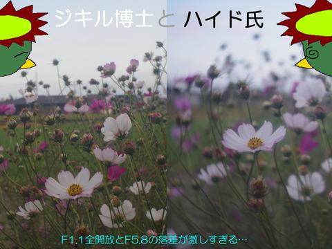 ZUNOW-ELMO CINE 13mm F1.1 D
