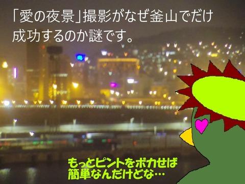 釜山愛の夜景2