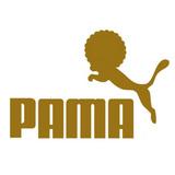 PAMA1