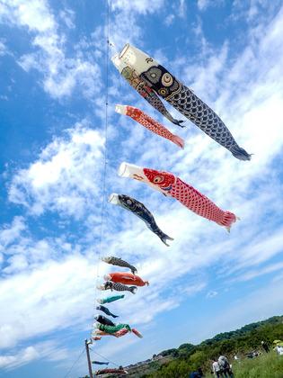 相模大凧祭り5