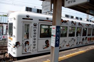 貴志川線5