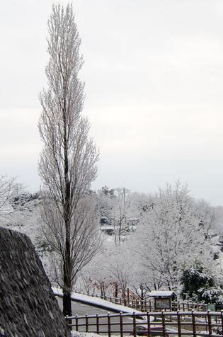 雪景色94
