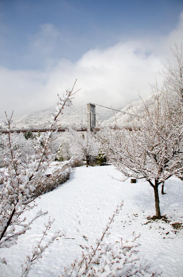 雪景色90