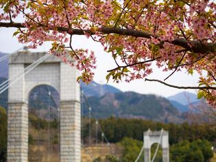 秦野戸川公園9