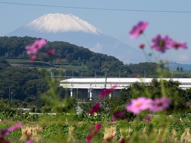 金目川02
