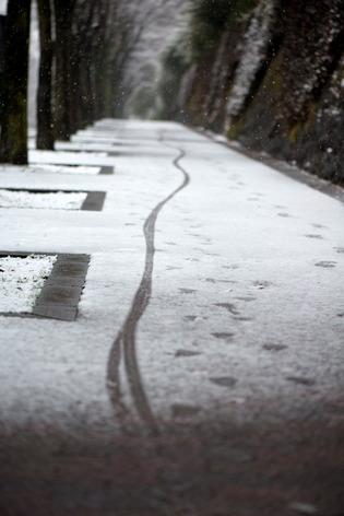 雪景色56