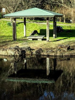 金目親水公園1