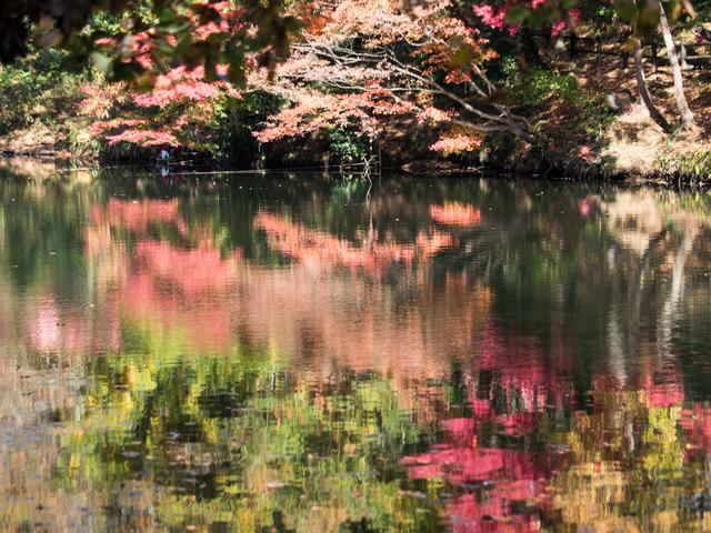 震生湖10