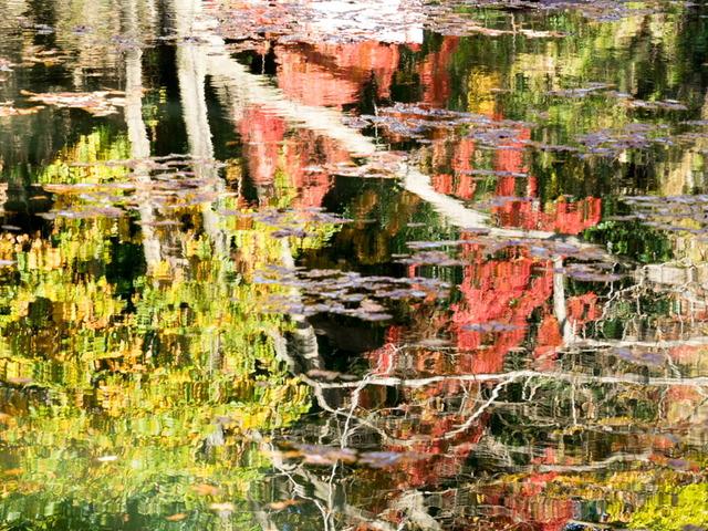 震生湖11