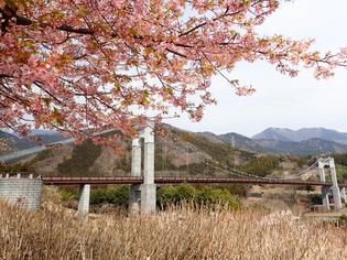 秦野戸川公園11