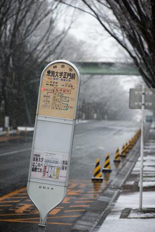 雪景色75