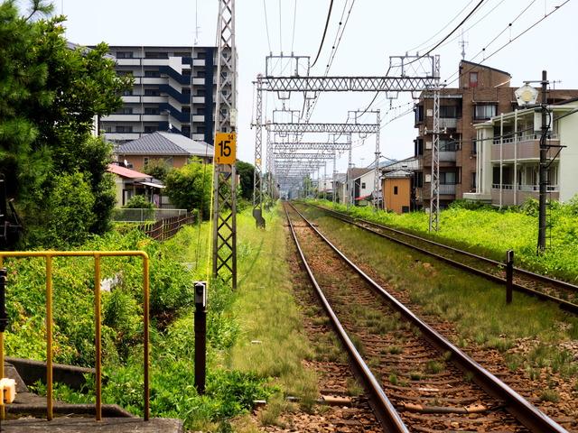 小田急線2
