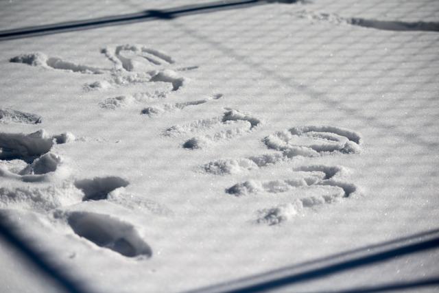 雪景色36