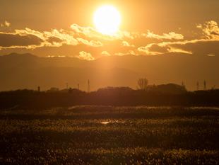 谷中湖17